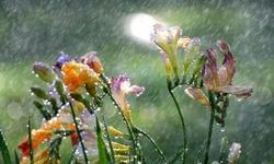 Новости такси Крым 82:Первые весенние выходные в Крыму будут дождливыми прогноз погоды на 5-6 марта